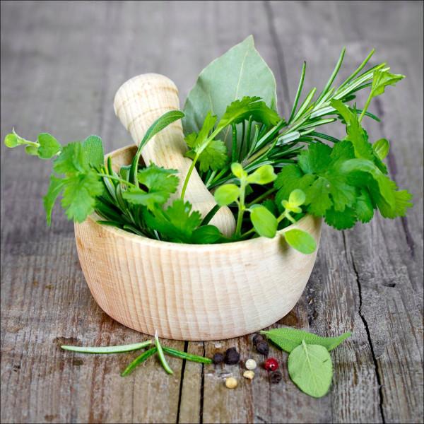 Glas-Bild Green Basil In Bowl I
