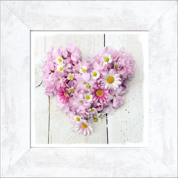 Bild gerahmt Rose Heart