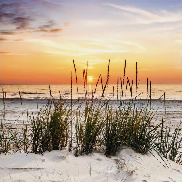 Canvas-Bild Lonely Dune