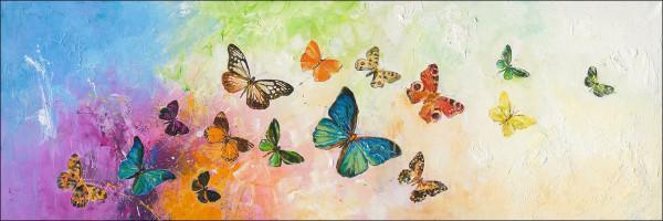 Original-Bild Butterflies