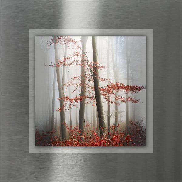 Alu-Bild Mystic Trees