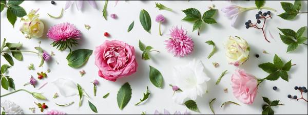 Glas-Bild Flower Collection I