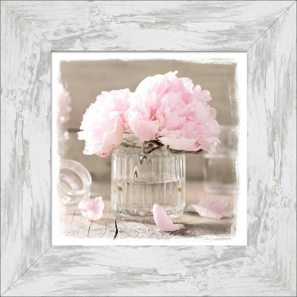 Bild gerahmt Rose Flowers