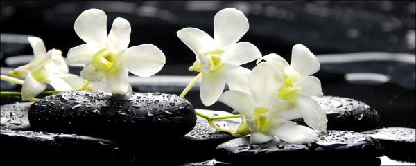 Glas-Bild Three Yellow Blossoms